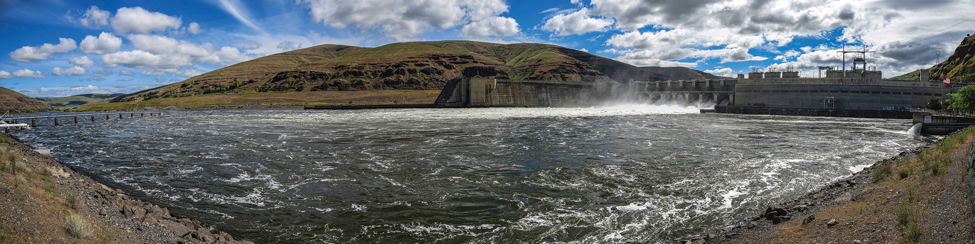 Salmon abundance in the Columbia will not be restored until the lower four Snake River dams are breached. Period.